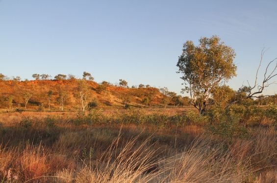 East Kimberley landscape near Halls Creek © AGWA 2015