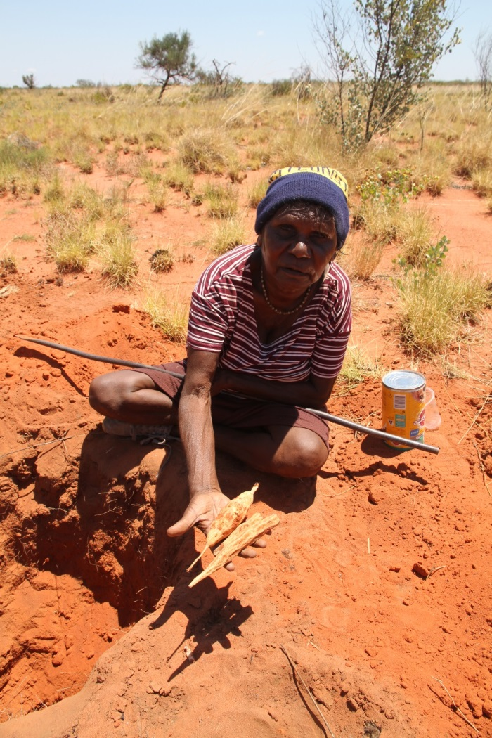 Warlayirti artist Helen Nagomara with the bush potato harvest from the bush tucker daytrip. Outside Balgo, Nov 2017 © AGWA