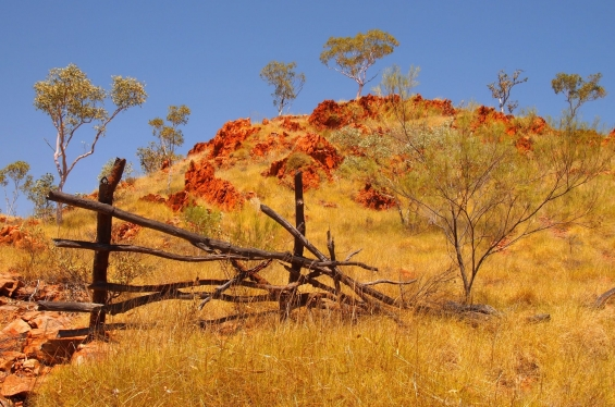 South Central Kimberley Landscape. © Mangkaja Arts Resource Agency 2014